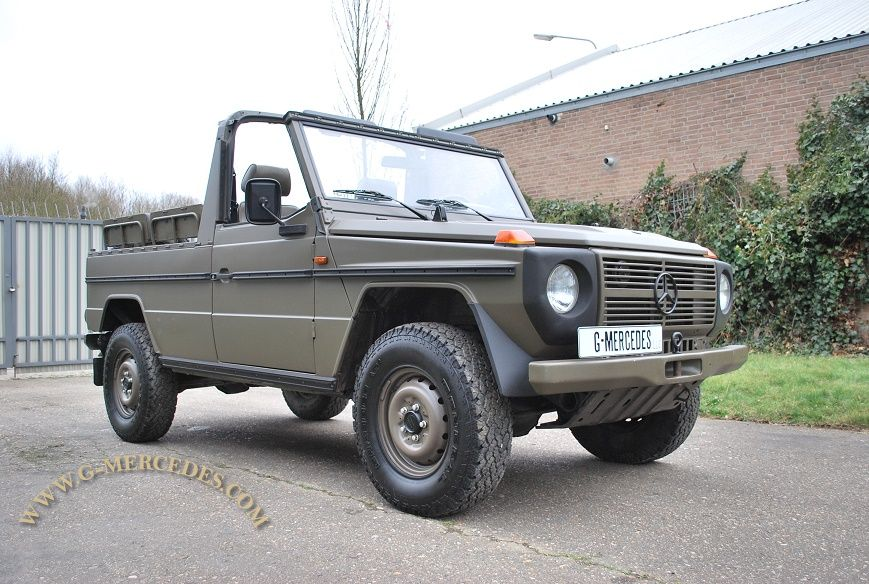 Austrian 300GD LWB, superb maintained  !